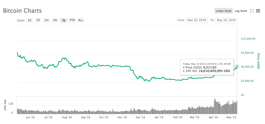 Bitcoin 1-year price chart