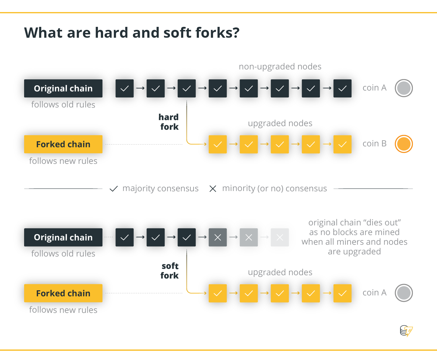 What  are hard and soft forks?