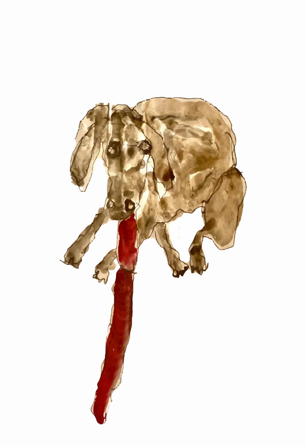 La pecora Lussu diAntonio Marras