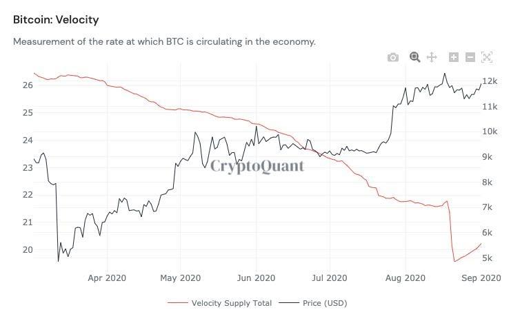 Bitcoin money supply velocity vs. price chart