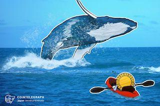 クジラと呼ばれる機関投資家とは