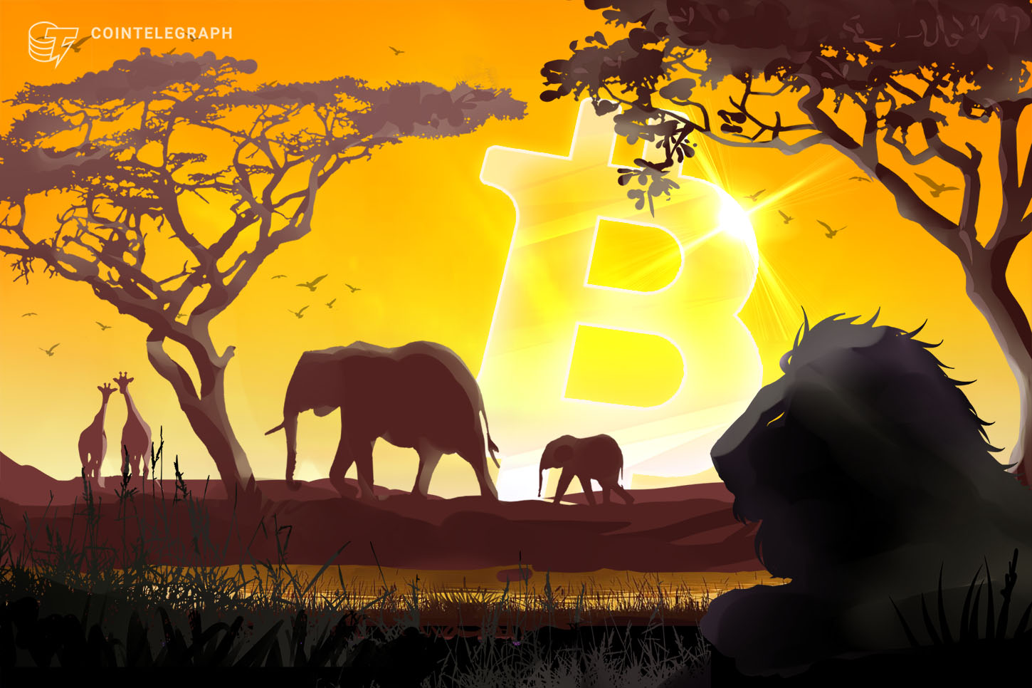 Documentary Review - Banking on Africa: The Bitcoin Revolution - Cointelegraph