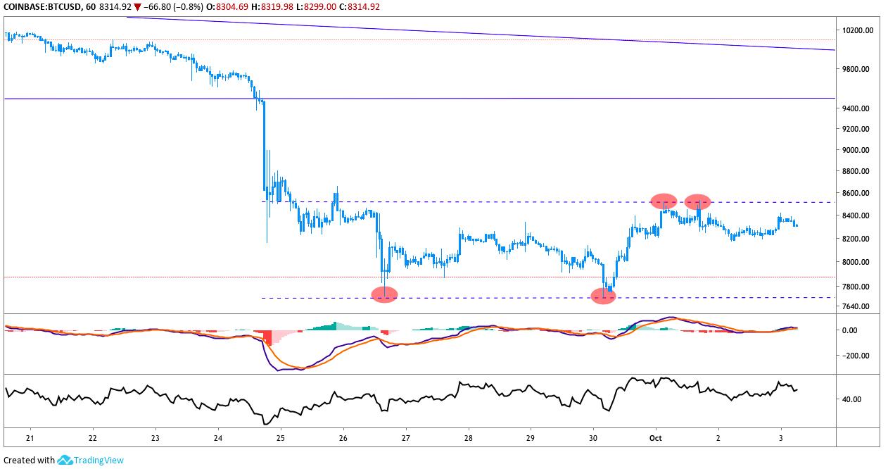 BTC/USD 1-Hour Chart. Source: TradingView
