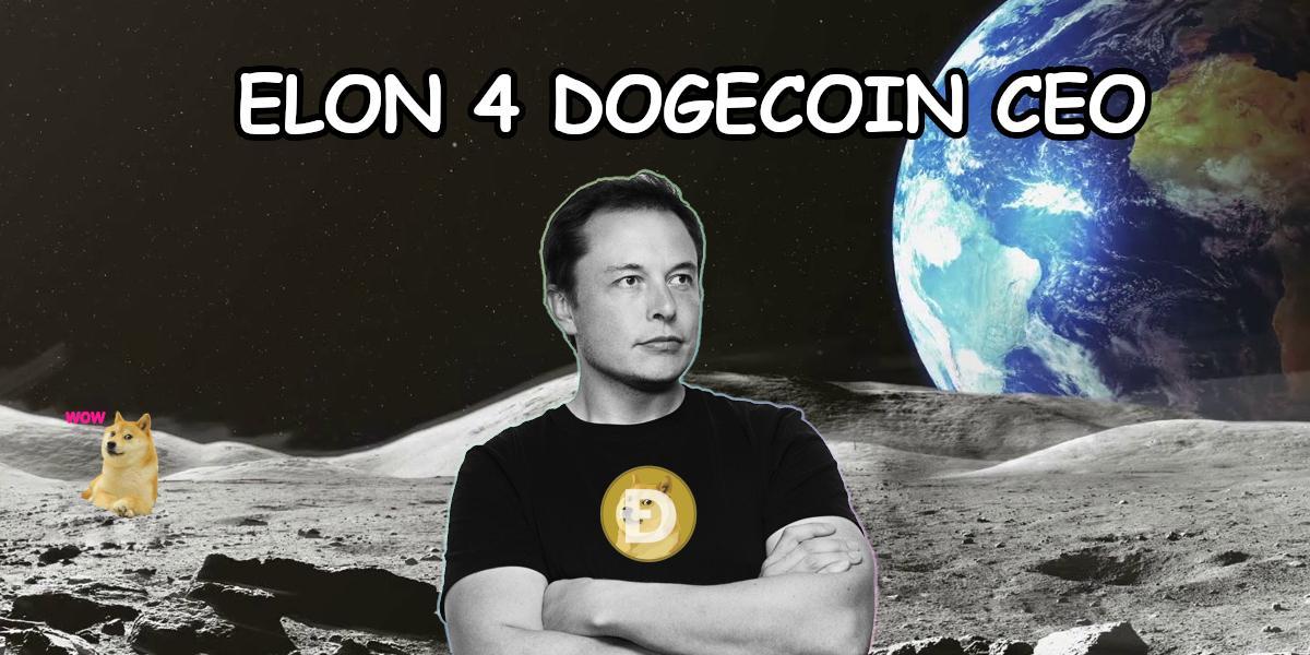 Elon Musk CEO di Dogecoin