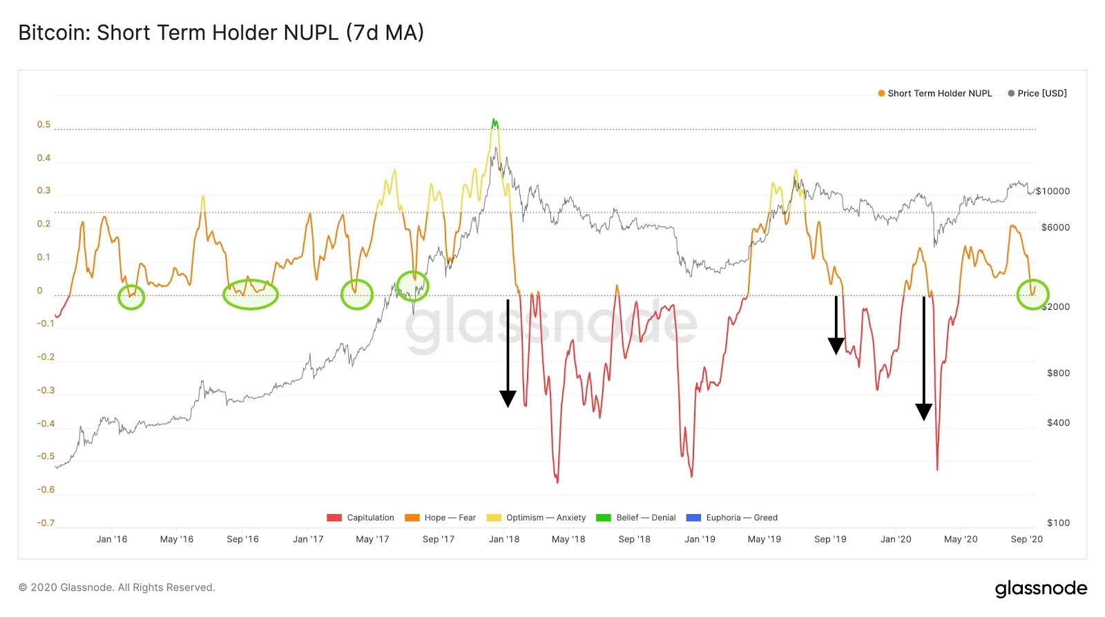 The Bitcoin short-term holder NUPL. Source: Glassnode