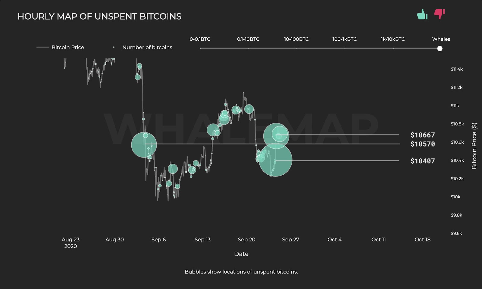 The hourly map of Bitcoin whale clusters