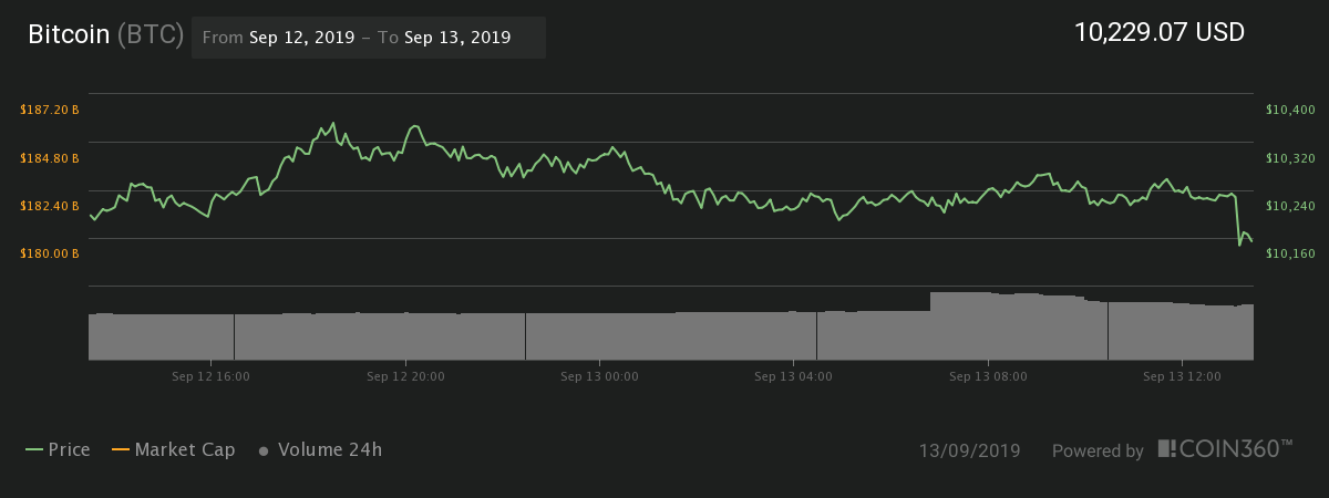 Bitcoin 24-hour price chart | Source: Coin360