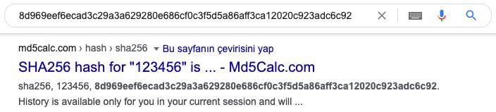 Google 123456 SHA-256 hash arama