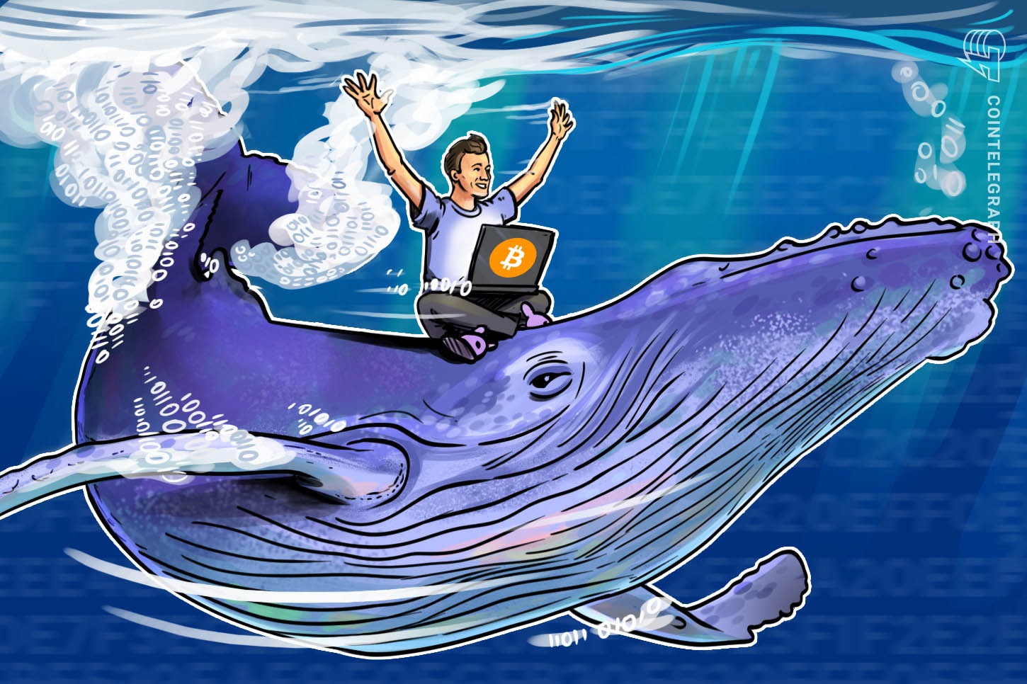 whale coin cryptocurrency