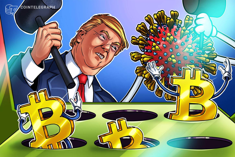 trump-or-biden-bitcoin-wins-regardless-of-us-election-barry-silbert