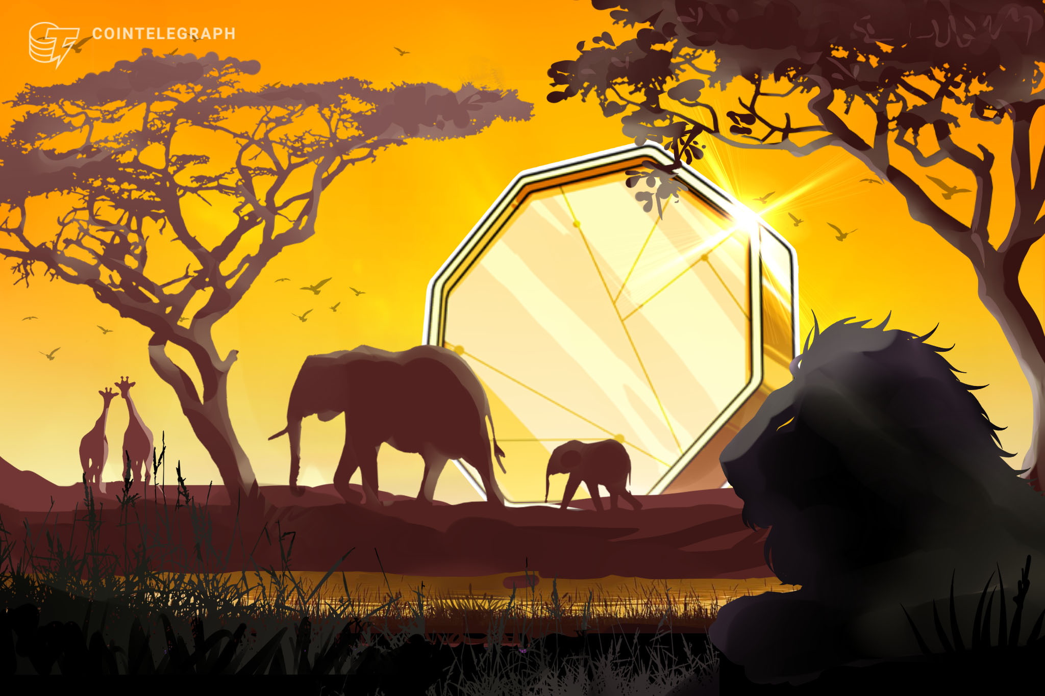 Following Binance Uganda closure, Binance P2P makes strong inroads in Africa