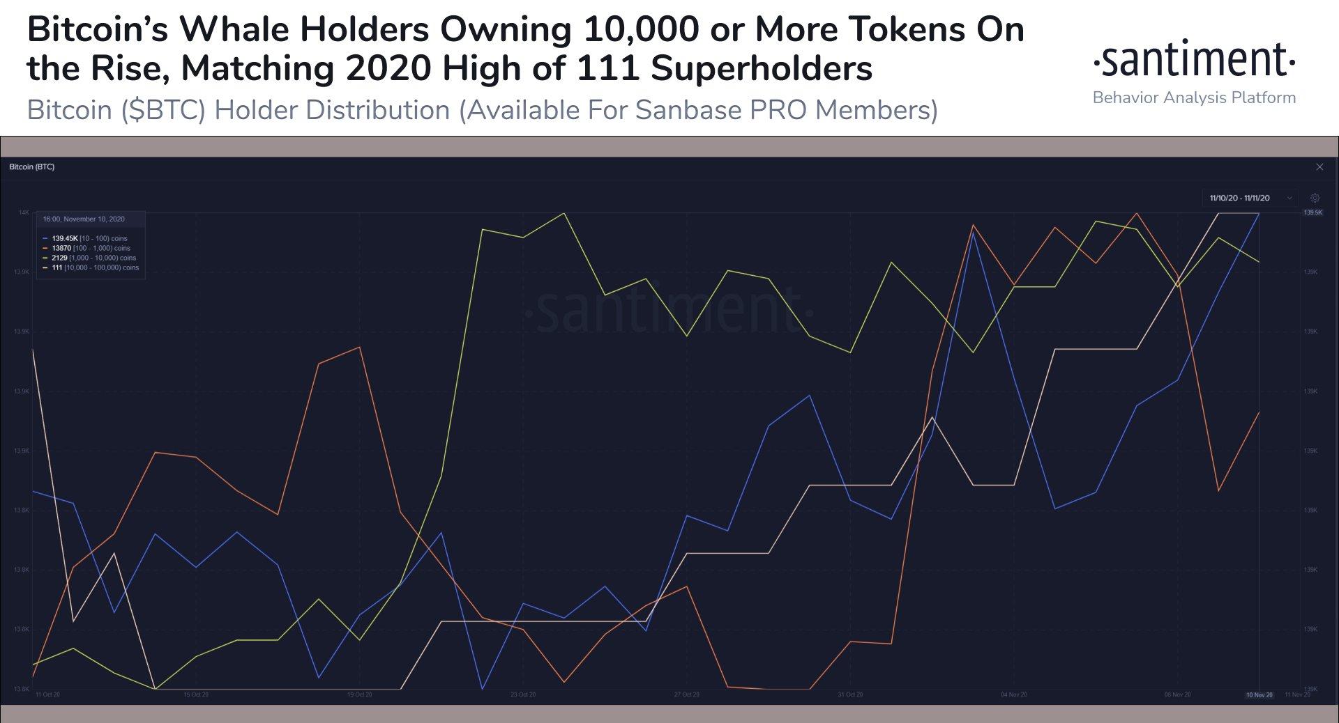 Il numero di partecipanti in Bitcoin considerati whale