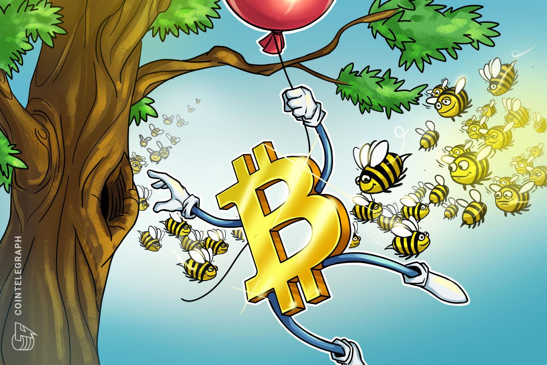los-expertos-dicen-que-las-instituciones-impulsaron-el-aumento-de-bitcoin-a-19000-y-que-se-acerca-la-temporada-de-las-altcoins