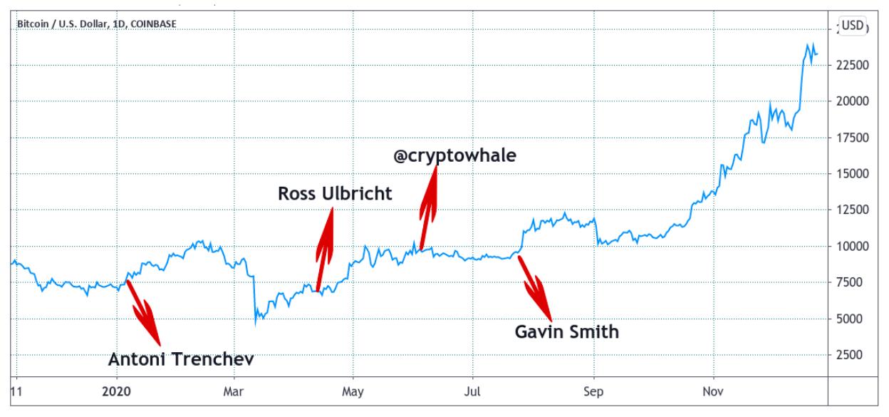 protezione del mercato bitcoin previsione