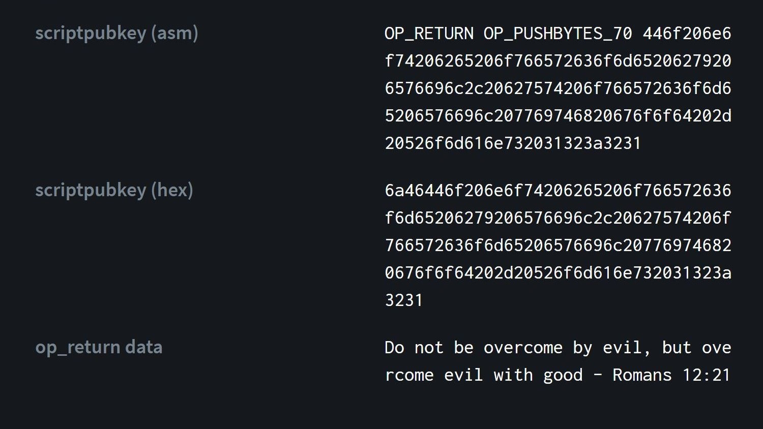 Biblical reference in Bitcoin block 666,666. Source: Bitcoinhackers.org