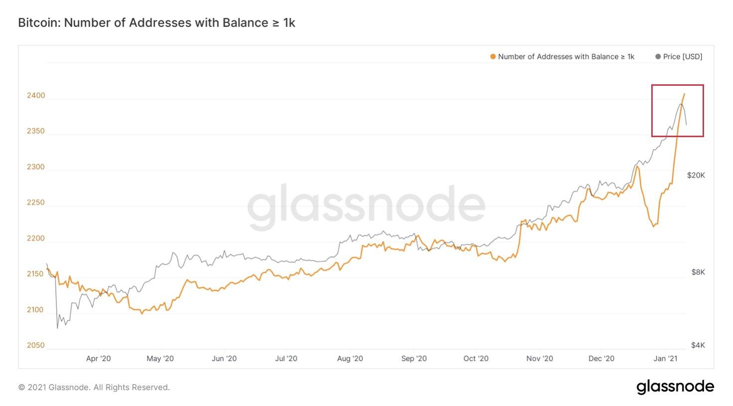 Grafico delle entità in Bitcoin con un saldo più grande di 1.000 BTC