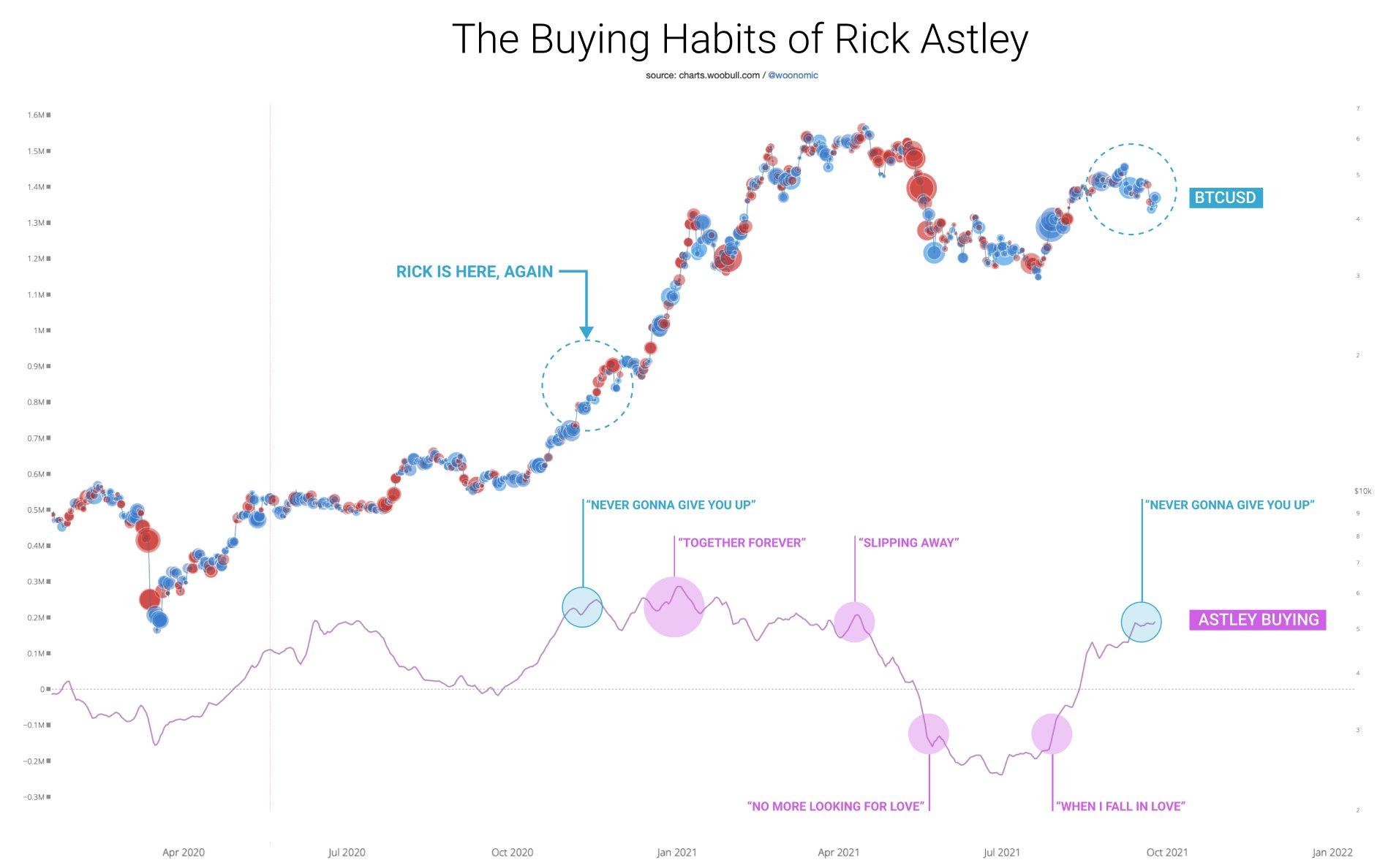 """Grafico delle fasi di investimento di """"Rick Astley"""" in Bitcoin vs. BTC/USD"""