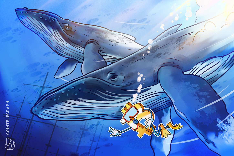 Bitcoin whales move 'record' BTC value as metric sounds alarm over price volatility