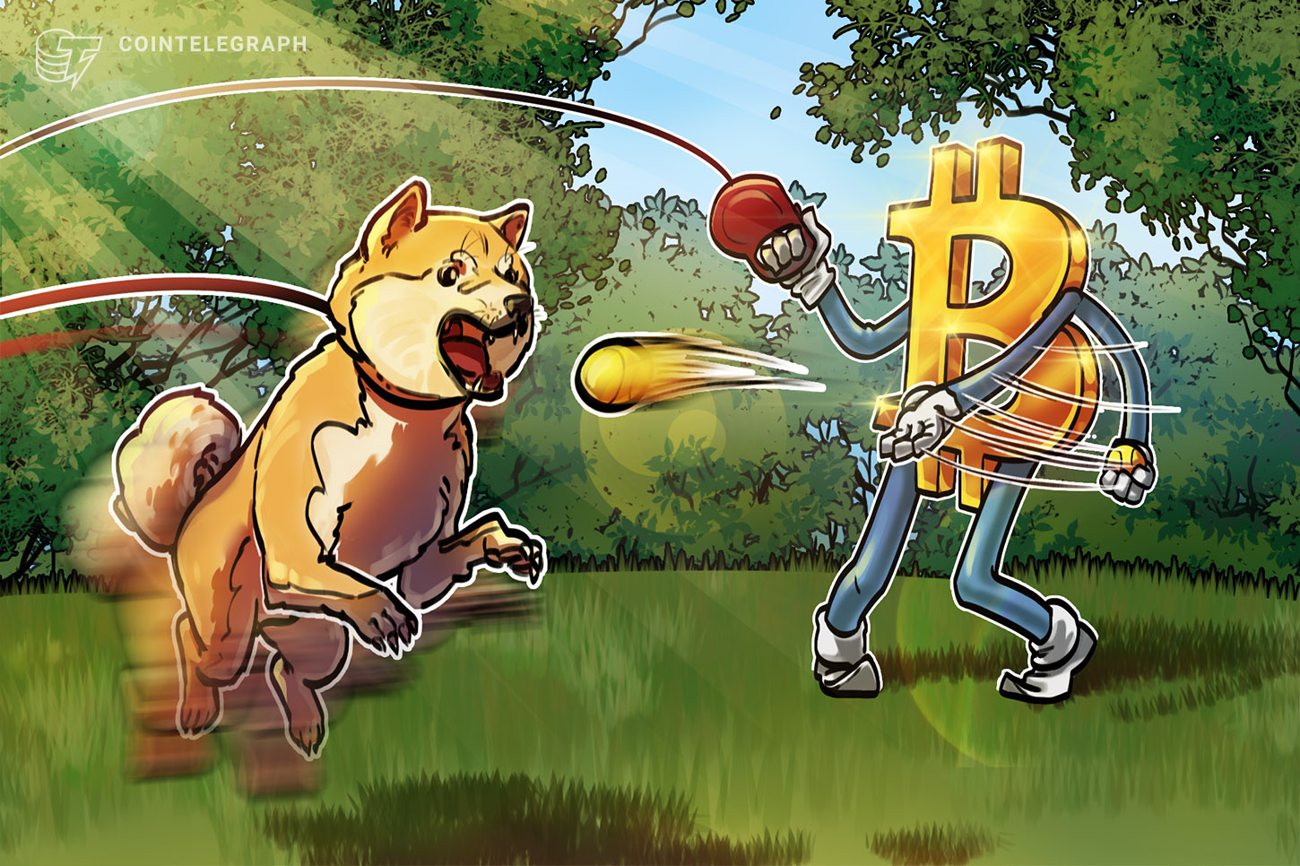 Dogecoin loses 70% against Bitcoin during 6 months of celebrity DOGE endorsements